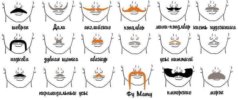 усы как ухаживать